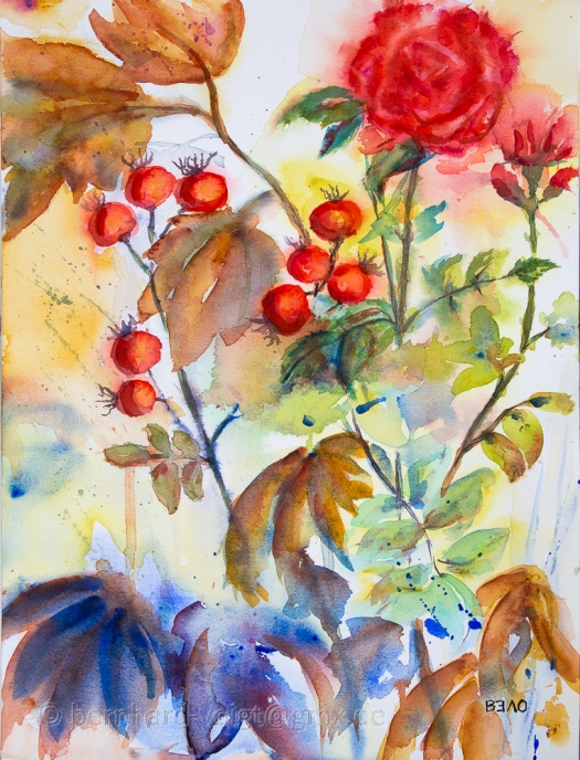 Herbststimmung mit Hagebutten II - Autumn mood with rose hips II