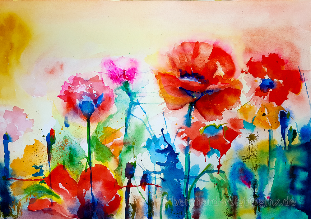 Mohnblumen, Poppies, Papaver rhoeas, Watercolour, Bernhard Voigt
