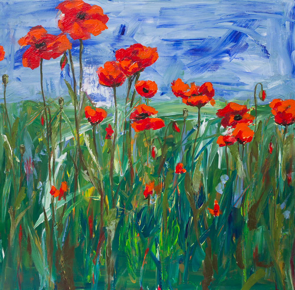 Mohnblumenwiese - Poppy Field, Acryl on canvas, 70cm x 70cm